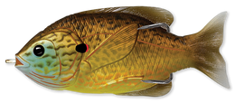 558 Copper Pumpkinseed