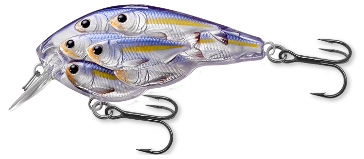812 Pearl / Violet Shad