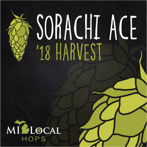 Sorachi Ace - 2018 - ON SALE