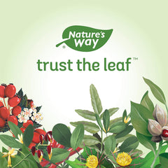 Nature's Way Nature's Way Melissa-leaves 100 Veggie Caps 100 Count