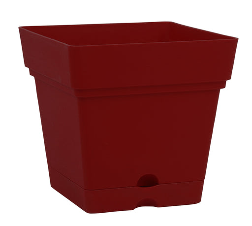 Square Pot With Wheels (38 cm) mintra-shop.myshopify.com Burgundy