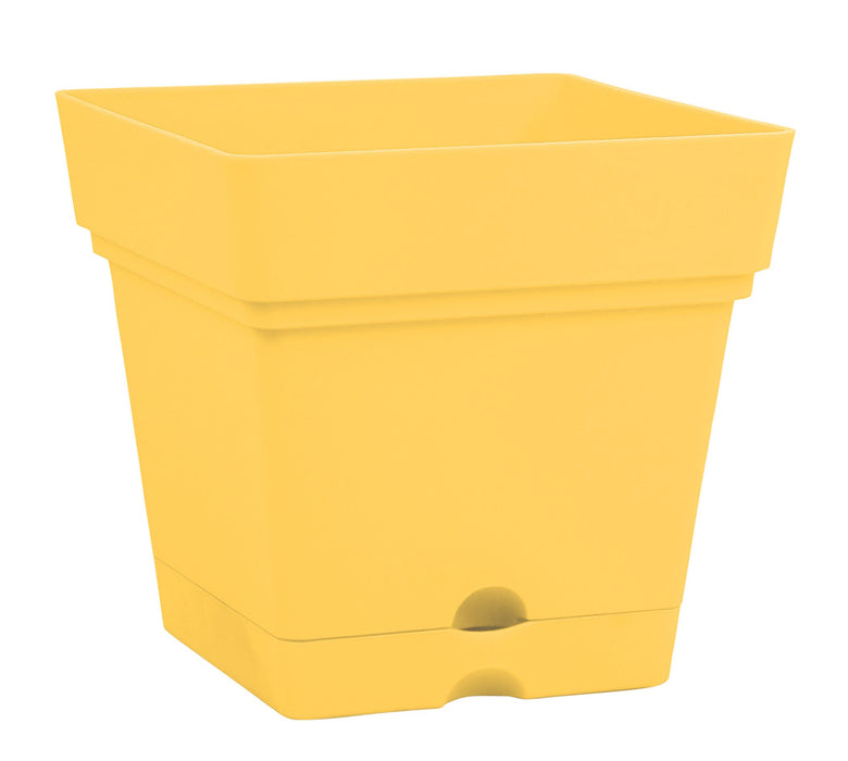 Square Pot With Wheels (38 cm) mintra-shop.myshopify.com Mustard