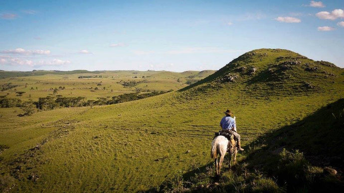 The Gaucho Trail - horseXperiences™ GO EQUESTRIAN