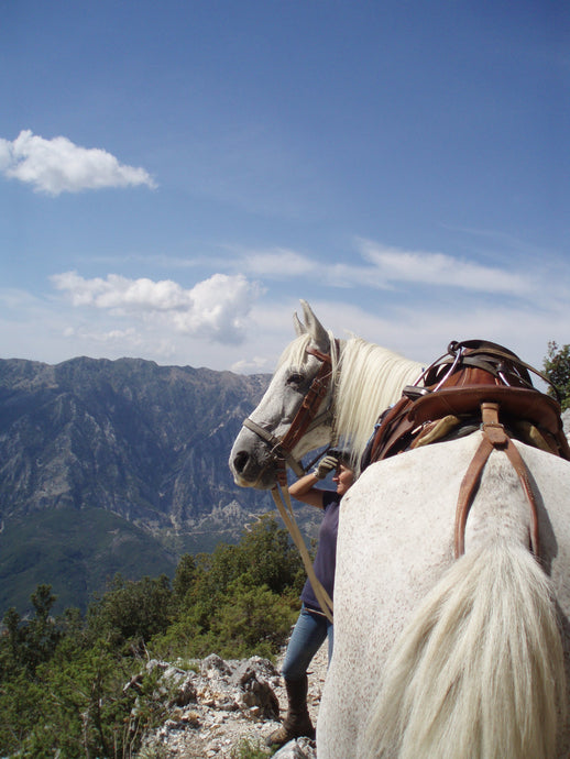 Following Zagoria Pathways - horseXperiences™ GO EQUESTRIAN