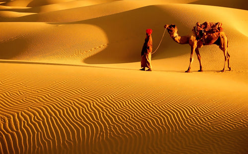 The Great Indian Desert - horseXperiences™ GO EQUESTRIAN