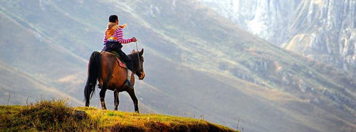 The Great Himalaya - horseXperiences™ GO EQUESTRIAN