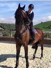 Load image into Gallery viewer, Italian Splendour - horseXperiences™ GO EQUESTRIAN