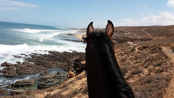 Sea, Mountain & Desert - horseXperiences™ GO EQUESTRIAN
