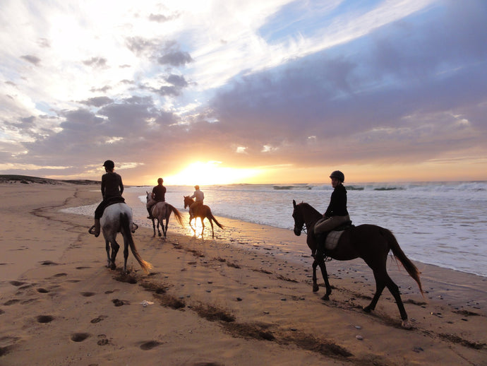 Big South Beaches - horseXperiences™ GO EQUESTRIAN