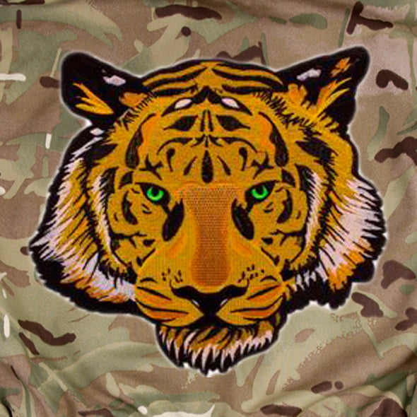 Green Eyed Tiger on Pale Camo