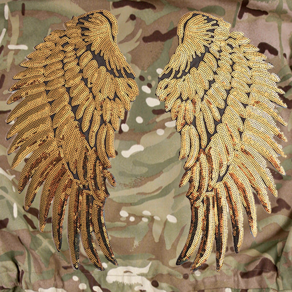 Gold Wings on Pale Camo