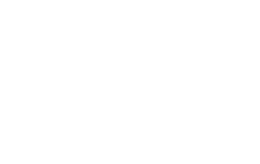 New Politics USD logo