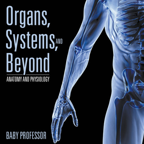 Organs Systems and Beyond | Anatomy and Physiology