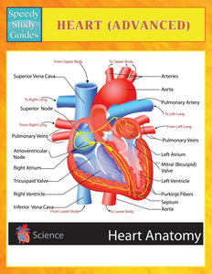 Heart (Advanced) (Speedy Study Guides)