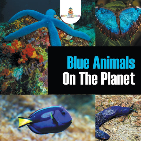 Blue Animals On The Planet