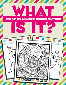 What Is It: Color By Number Hidden Picture