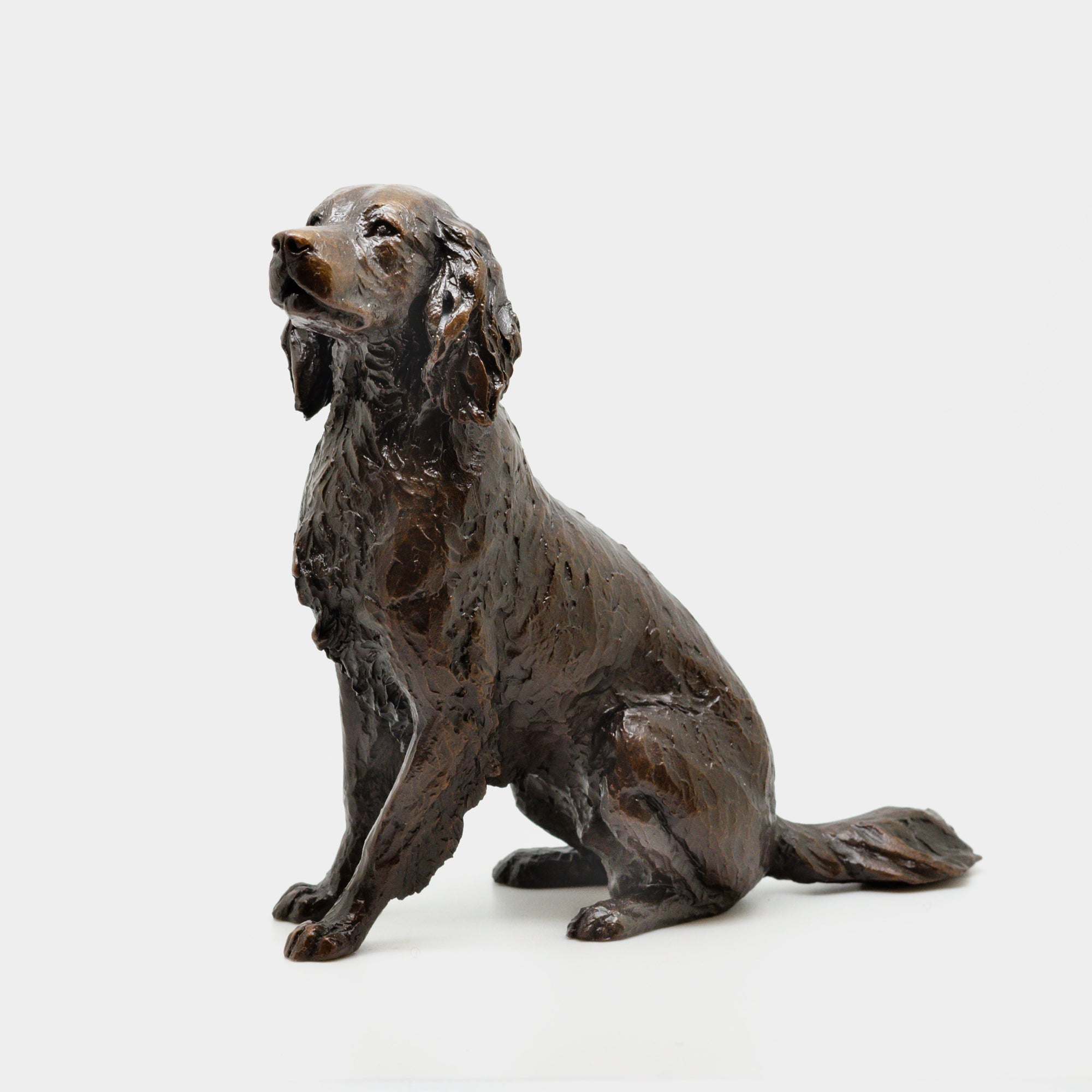 Medium Bronze Springer Spaniel - Jordans Jewellers