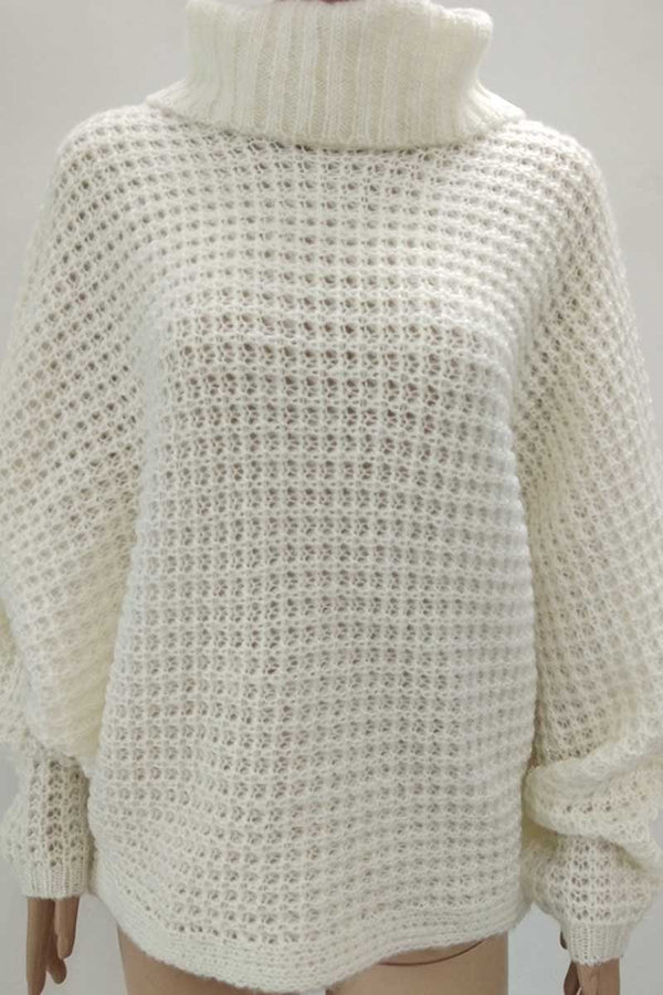 Borical Solid Color Turtleneck Jumper