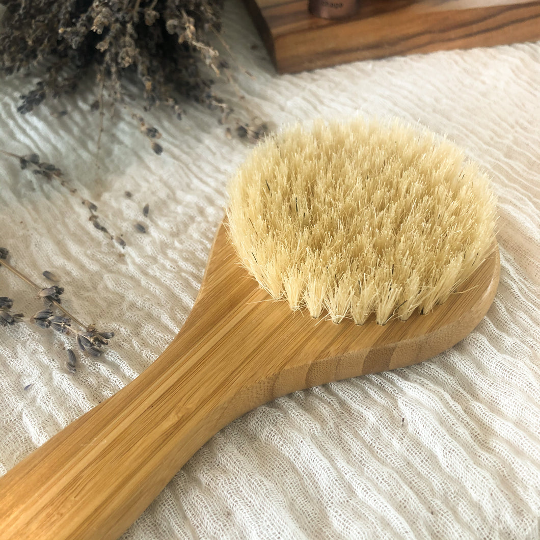 Dry Body Brush