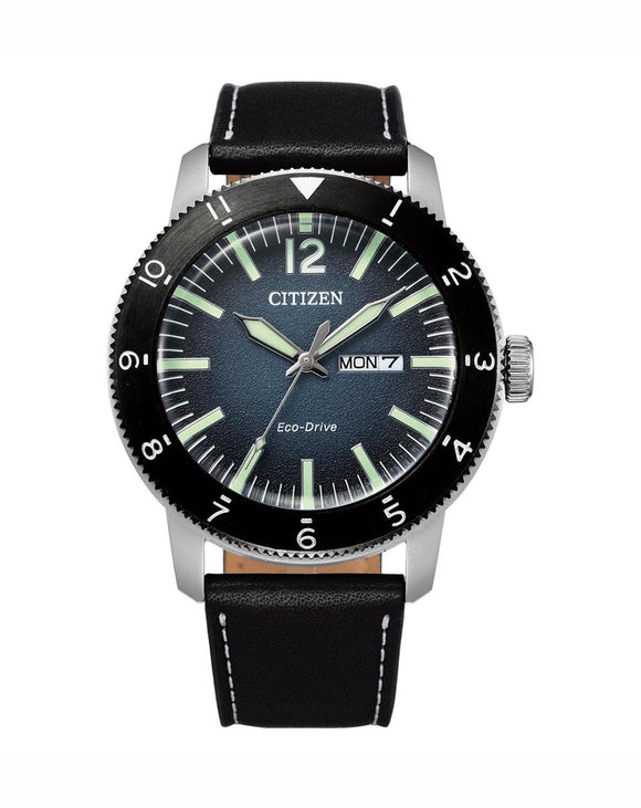 Citizen Eco-Drive  Men's Watch AW0077-19L