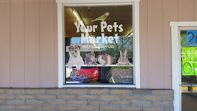 A Purrrrrfect Gift For Your Fur Babies at Your Pets Market | Value: $50