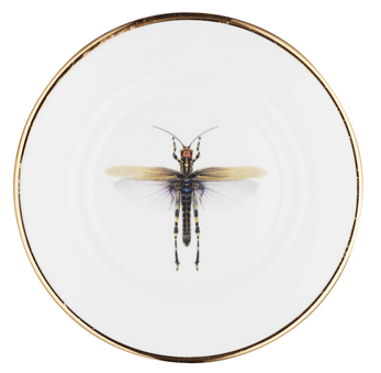 Dragonfly Bone China Plate