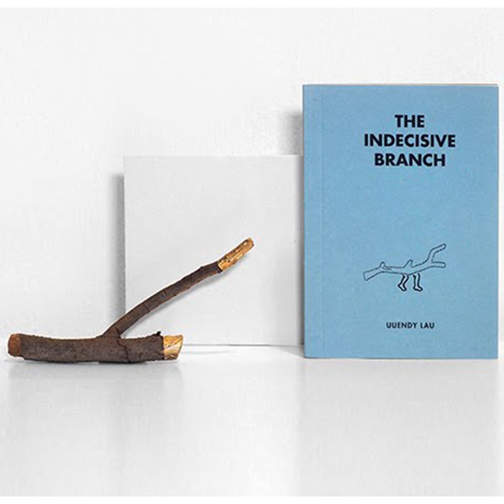 Book 02 - The Indecisive Branch (with an object)