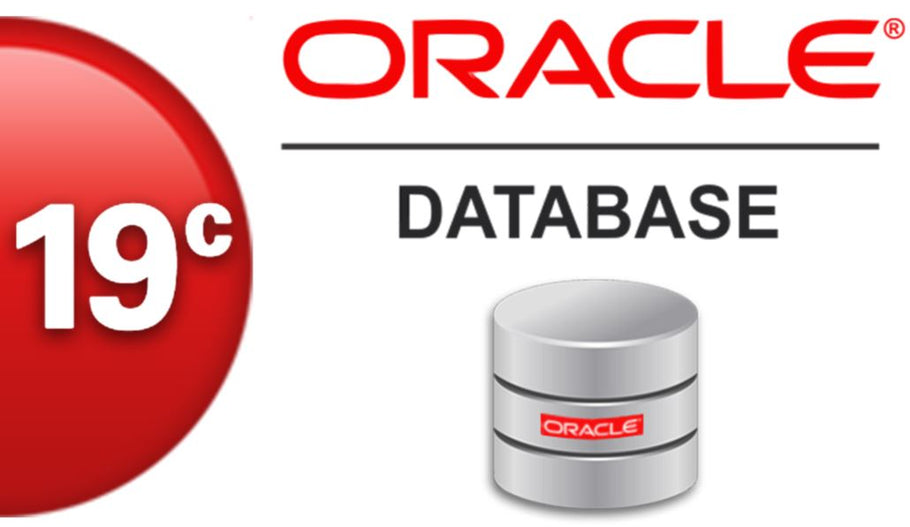 How my Oracle 19C Real Application Cluster crashed?