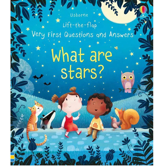 Usborne Lift-the-Flap First Questions and Answers: What is Star? 2Yr+
