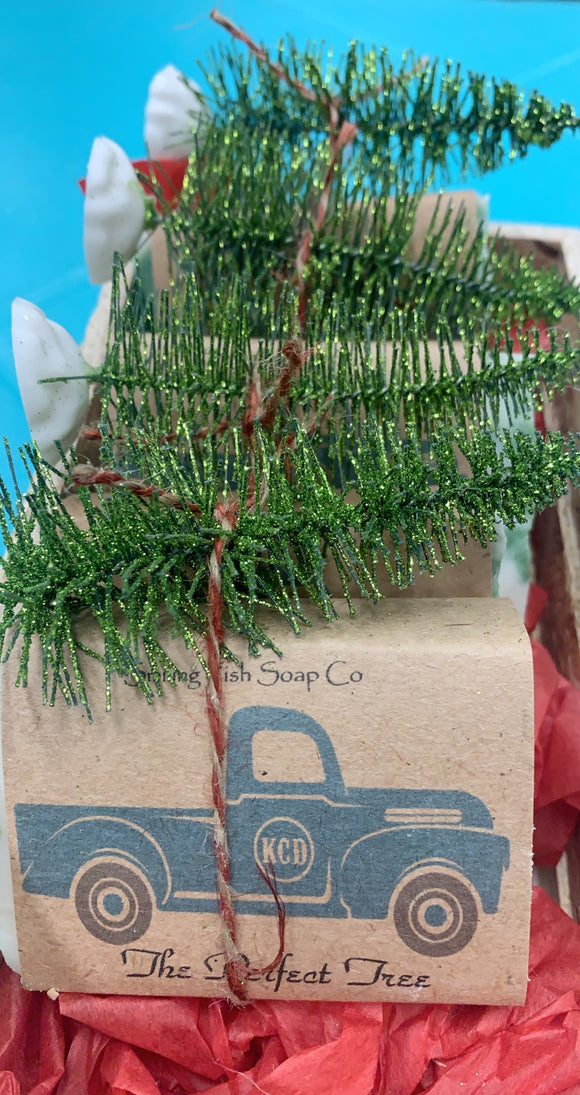 KCD Turquoise Truck with Tree Soap