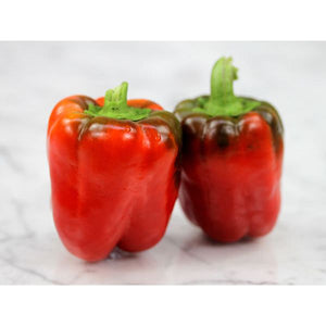 Hot House Red Bell Pepper