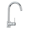 Luxe Single Hole/Single Lever Faucet with Gooseneck Swivel Spout - AlternativeRoute