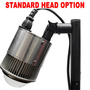 Swivel head table clamp lights
