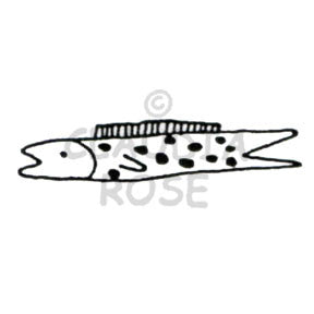 Spotted Fish - CR323D - Rubber Art Stamp