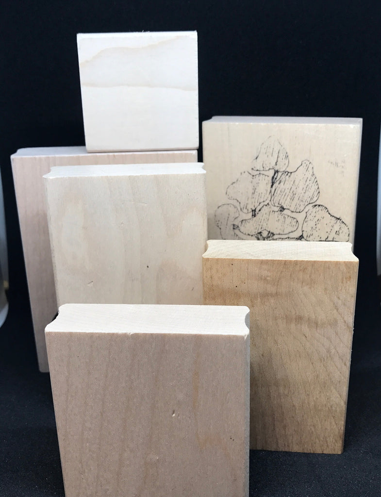 Assortment of Wood Blocks