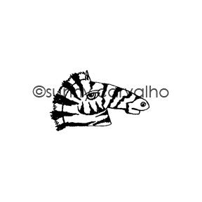 Sunny Carvalho | SC5396E - Zebra Face - Rubber Art Stamp