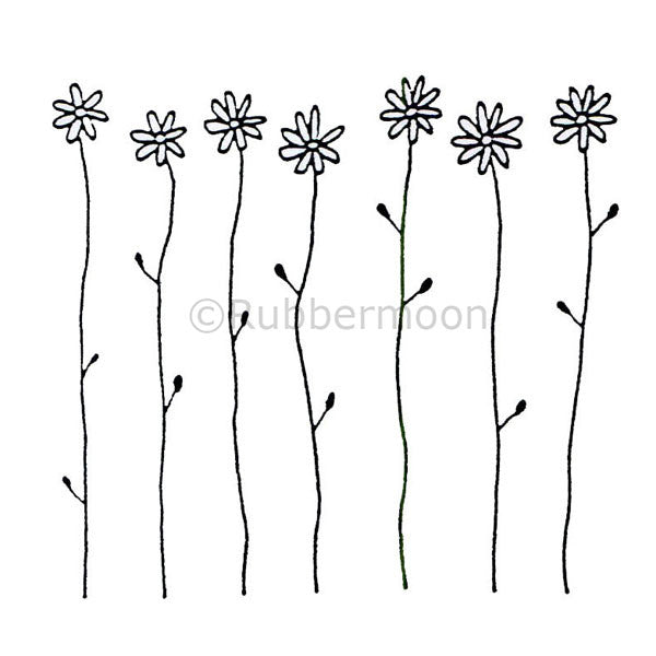 Dave Brethauer | DB2421H - Seven Daisies - Rubber Art Stamp