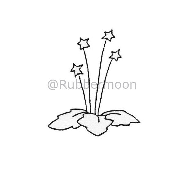 4 Star Plant - DB4498D - Rubber Art Stamp