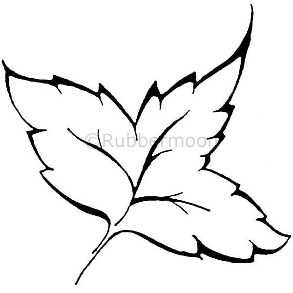 Dave Brethauer | DB4680F - Large Leaf - Rubber Art Stamp