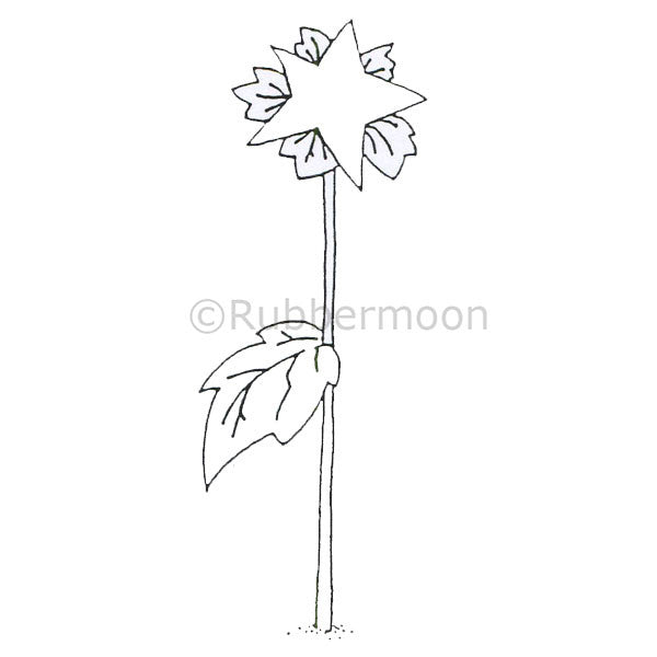 Dave Brethauer | DB4682H - Starflower (large) - Rubber Art Stamp
