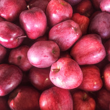Load image into Gallery viewer, Apples, fresh picked locally grown, 4-5 lb. bag