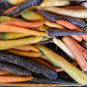 Carrots, Organic Rainbow Color, lb.