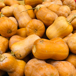 Squash, local Honeynut Squash, lb.