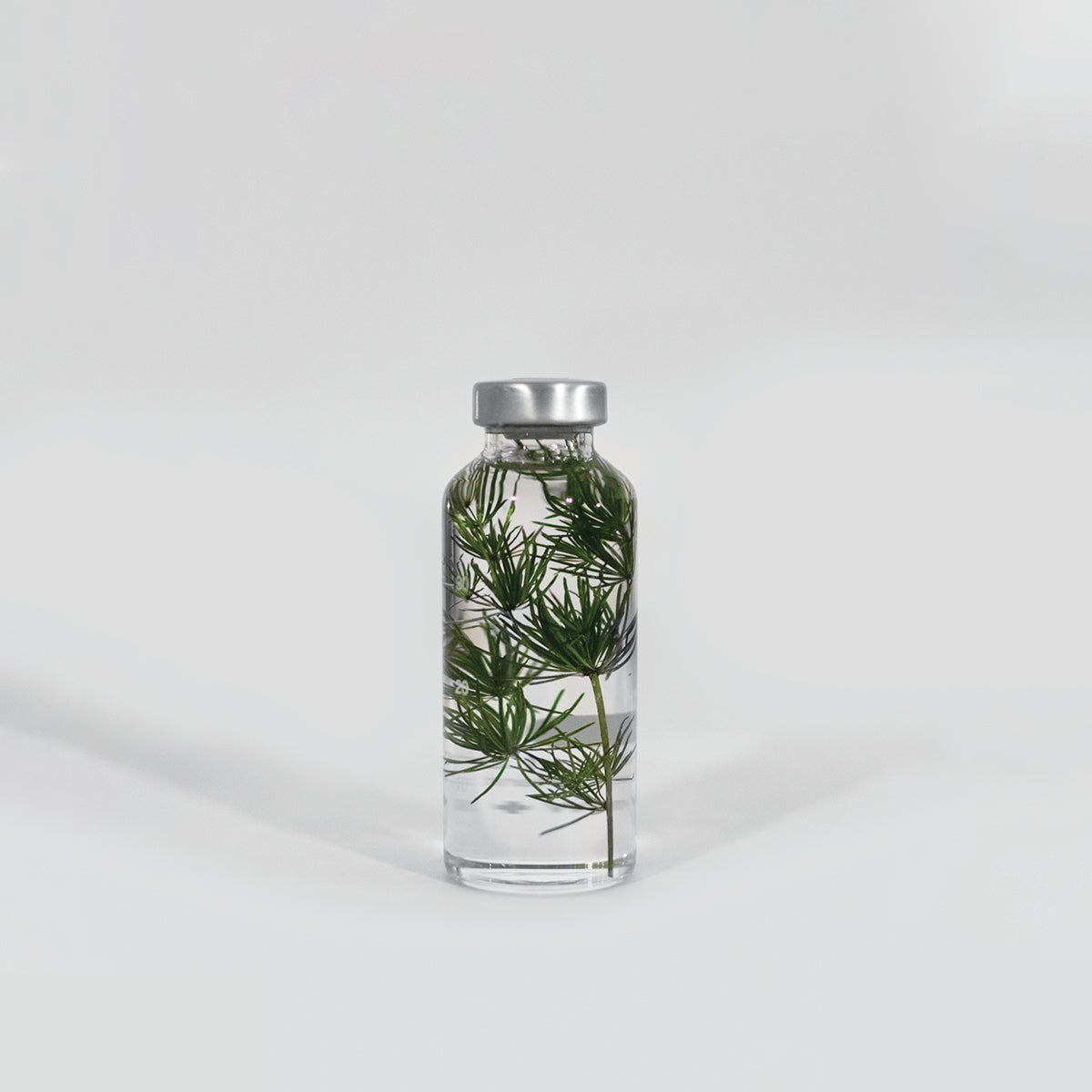 Plante en bouteille 30ml | Myriophyllum - Slow Pharmacy