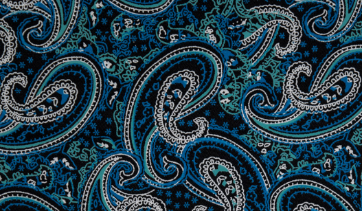 ROBE SHALL COLLAR / LUXURY BLUE PAISLEY