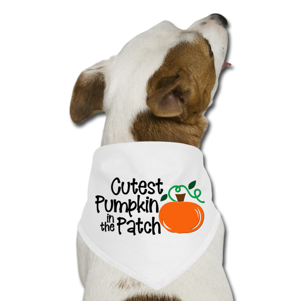 Dog Thanksgiving Bandana - Cutest Pumpkin in the Patch - white