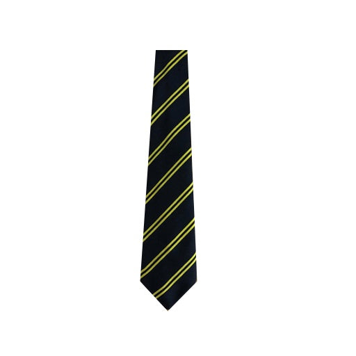 Hailsham House Tie - Farah (Yellow)