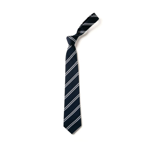 St. Francis Tie - NEW!