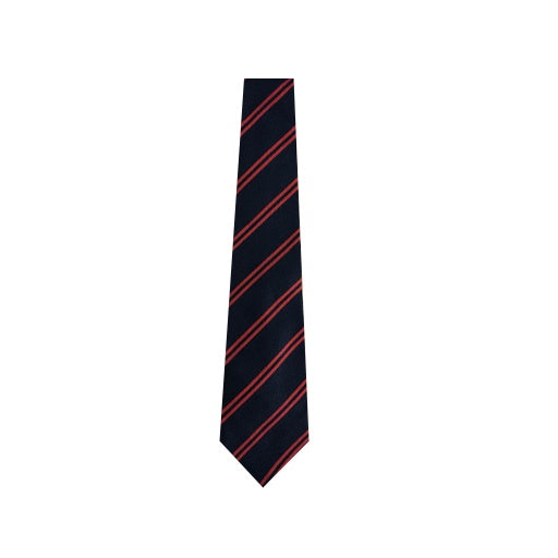 Hailsham House Tie - Wiggins (Red)