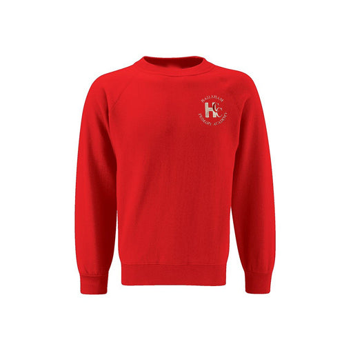 Hailsham Primary Jumper